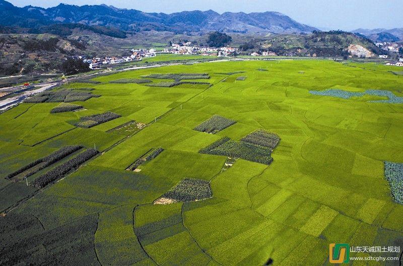 家庭农场最大承包土地超过千亩