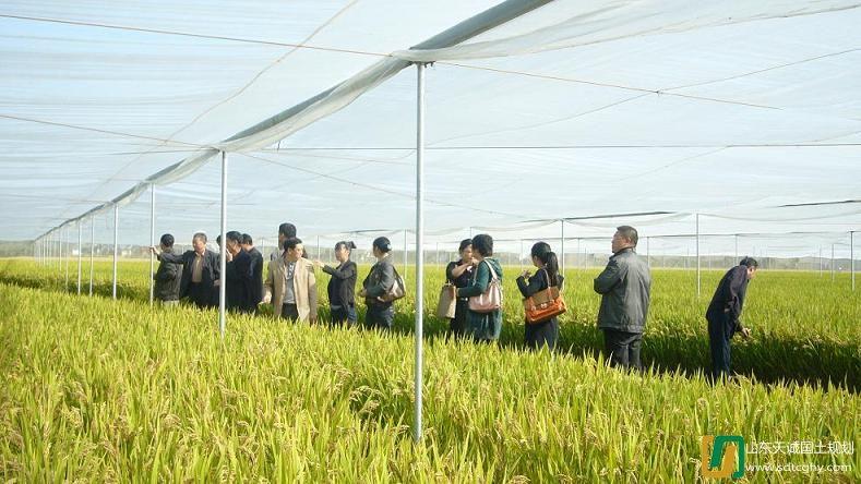 如东县积极推进农业综合开发规划建设工作