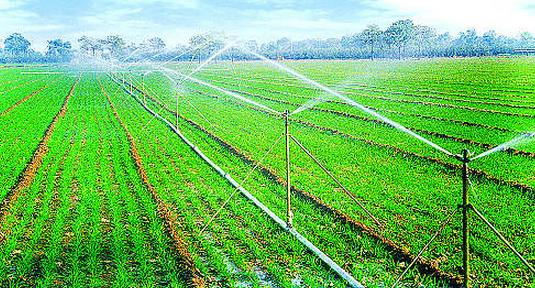 县小型农田水利设施项目建设办法(征求意见稿)