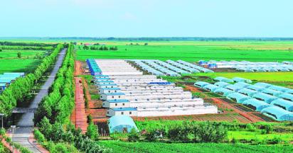 现代农业示范区