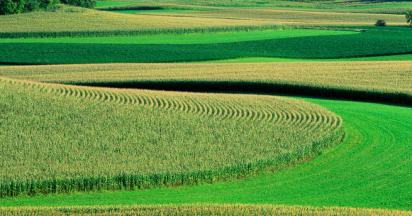 耕地质量等级补充完善项目