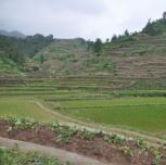 农业综合开发项目