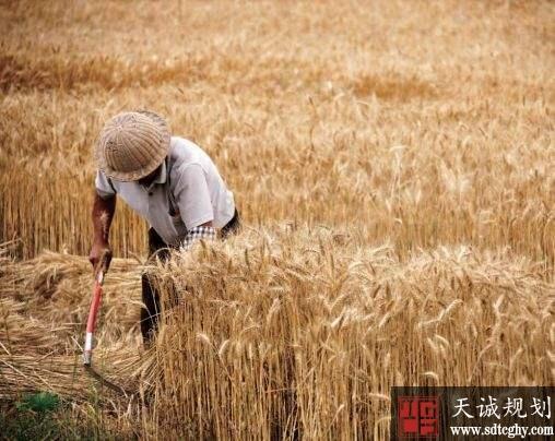 北京举行全国农村集体产权制度改革部际联席会议
