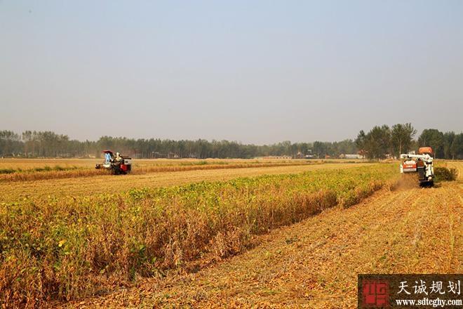 河南基本完成土地确权登记唤醒沉睡农业资本
