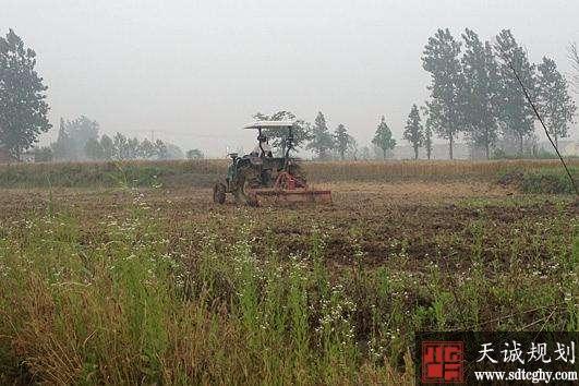 瓜蒌村土地整理并流转开启农户致富新路