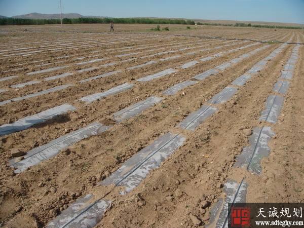 化德县四项机制同行 严格耕地保护严守耕地红线