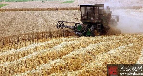 亳州家庭农场的兴起让贫困户家门口实现就业