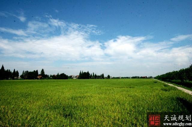 甘肃《规划》获批复 2020年建成1512万亩高标准农田