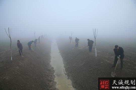 阜阳市投资71亿元建设农田水利取得突破性进展
