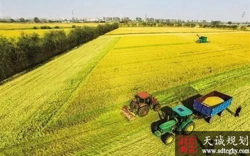 """紧抓三把""""钥匙""""推进农村土地市场化改革"""