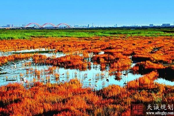 首批20家企业与滨海新区政府签订了土壤污染防治责任书