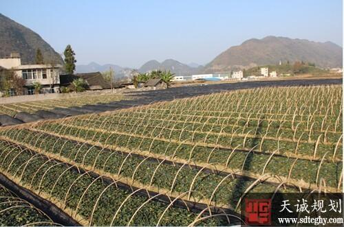 鹤峰县首发12万元土地贷款 土地抵押贷款破冰