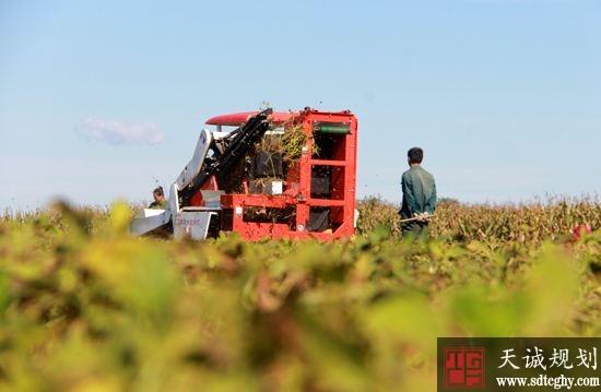 昌图县5.9亿多元贷款破解农民生产和流转土地资金难题