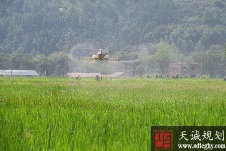 上饶县积极土里规模化土地流转 促进农业适度规模经营