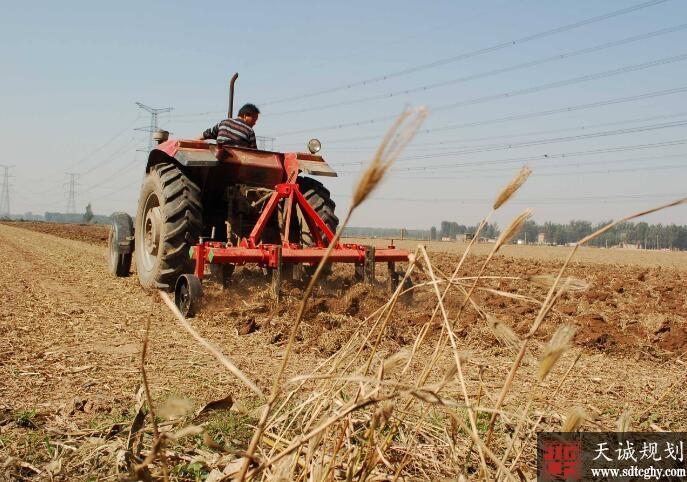 第二轮土地承包再延30年保障农民财产权益