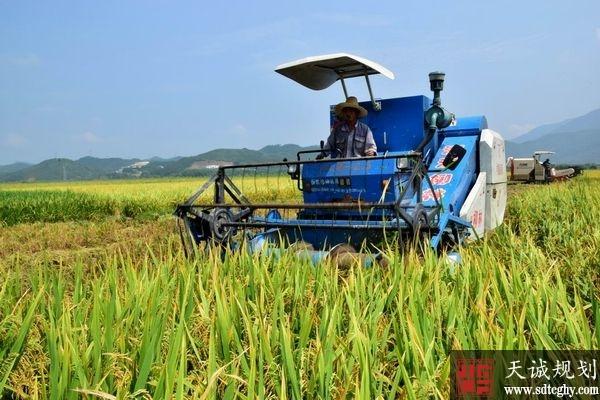 邵武发布《土壤环境保护方案》实施农用地分类管理