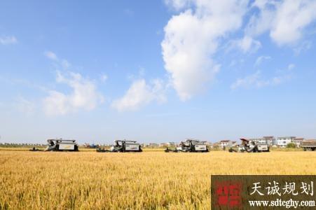 启东市投资3378.7万元全面启动农田水利建设项目建设