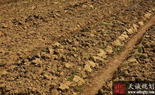 山西耕地占补平衡异地交易455.8亩活收益2000多万元