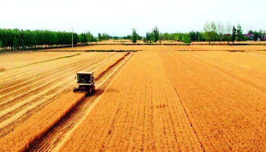 国土部印发《通知》严格规范新增耕地管理确保数量质量真实可靠
