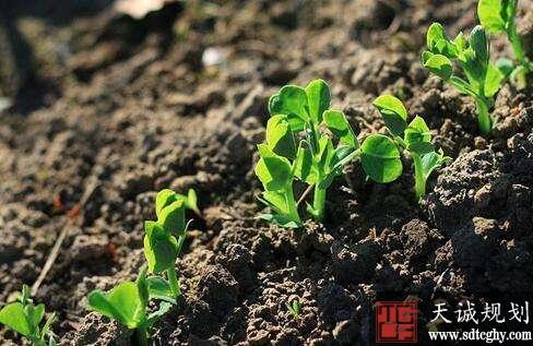 德州出台《方案》到2020年实现土壤环境风险得到基本管控