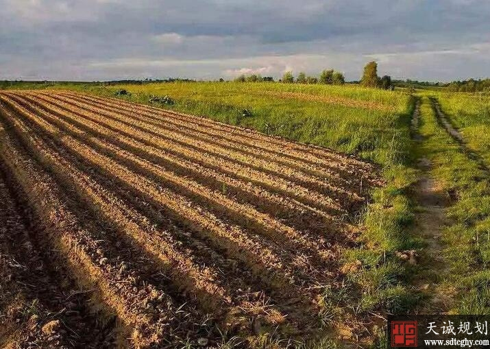 江苏七十万亩耕地将轮作休耕恢复耕地元气