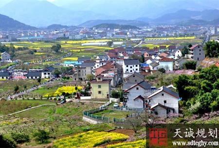 山东编制完成乡村振兴战略规划 2022年基本实现三成村现代化