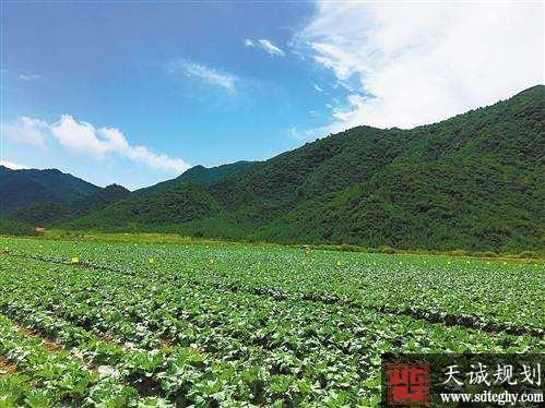 """开阳县570余户签订土地流转合同 稳推蔬菜保供基地""""千亩核心区"""""""