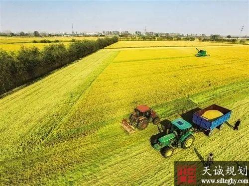 农土地改革向更深层次推进 破解重点热点难点问题