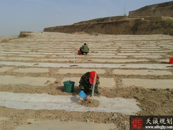 农业农村部帮黑龙内蒙抗旱保苗增产各项措施稳定粮食生产