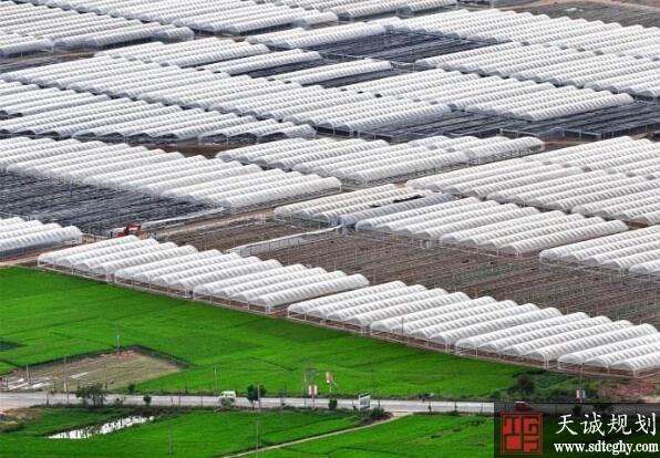 仙游县农土地抵押贷款累计发放304笔贷款额达3亿余元