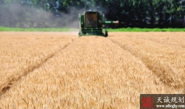 沙雅县农土地流转提高农民收入让农民对脱贫充满信心
