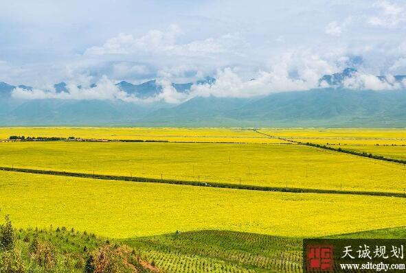 青海首批农土地承包经营权证发到农户手中