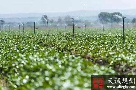 邓州农业水价改革提高节水意识助推土地流转