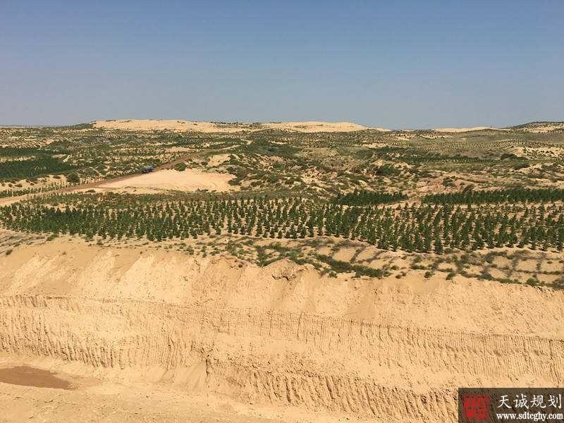"""中国荒漠化土地十年持续减少 由""""沙进人退""""向""""绿进沙退""""转变"""