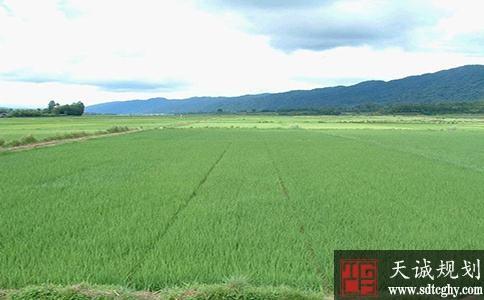 黑龙江耕地保护考核出现问题将暂停土地征收审批