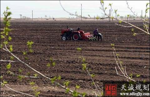 通辽市农土地流转发展特色种植业走上致富大路