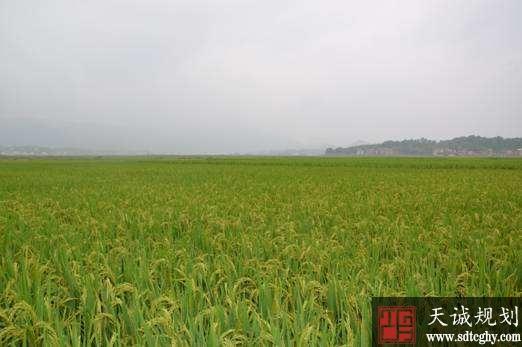"""道县农土地确权颁证成效好 创了三个""""全省第一"""""""