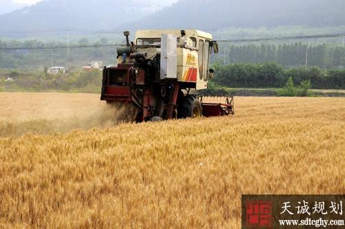菏泽市完善土地流转机制统筹使用涉农资金助力脱贫攻坚