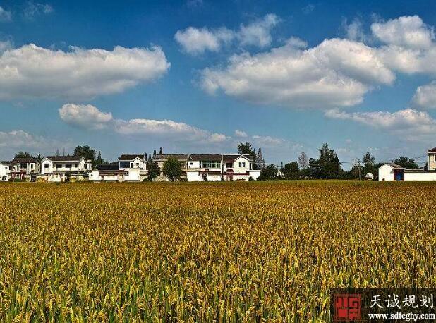 """扬州示范家庭农场设置绿色""""门槛""""秸秆综合利用率需达95%"""
