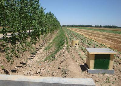 商河农田水利工程为精准脱贫提供强力支持