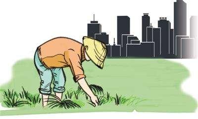 土地管理法修订或加速解决土地改革完成法律性问题