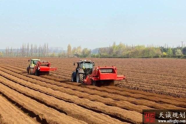 农村土地确权后哪几种情况农民不能种地了?