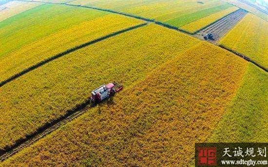放活农村土地市场 扩大农民财产性收入来源