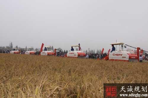 辽宁年底前实现农垦土地确权登记发证面积要达到90%以上