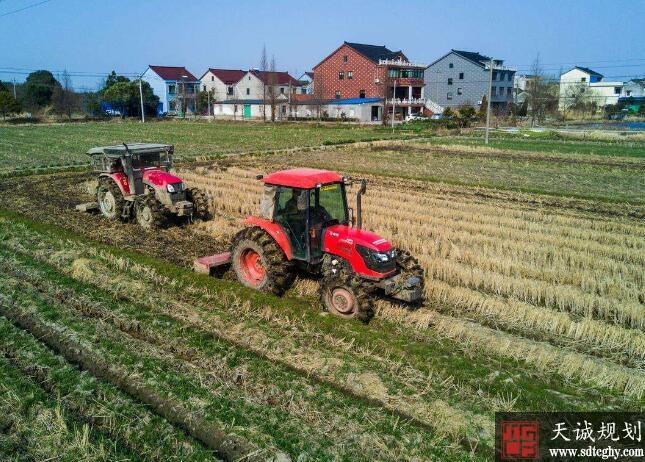 上海探索农土地股份合作改革促农业增效农民增收