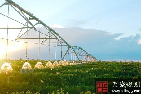 """寿县8061万助推农田水利""""最后一公里""""工程改善农业灌溉条件"""