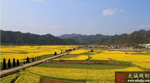 黄山区农地抵押贷款激活农村闲置土地资源带动农村繁荣