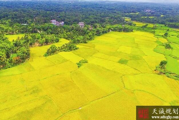 海南印发《办法》建立健全耕地保护责任目标考核制度