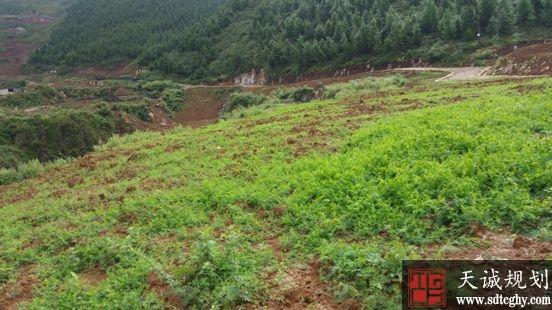 河南对省内建设用地规模指标进行统筹调盘活闲置土地
