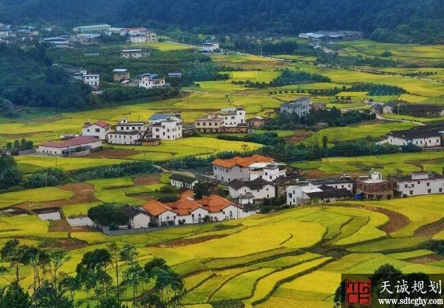 农村土地承包法大修为乡村振兴注入活力